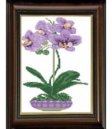 Лилава орхидея 1:1