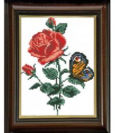 Роза с пеперуда 1:4