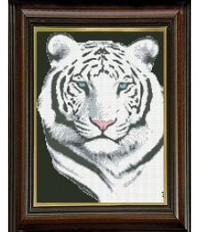 Бял тигър в нощта 1:1