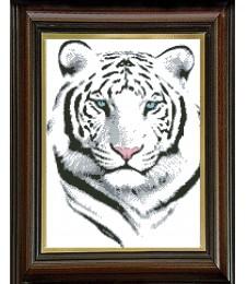 Бял тигър 1:1