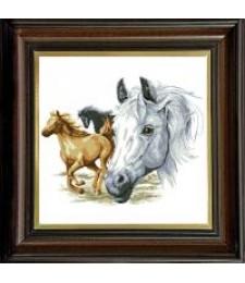 Волни коне 1:1